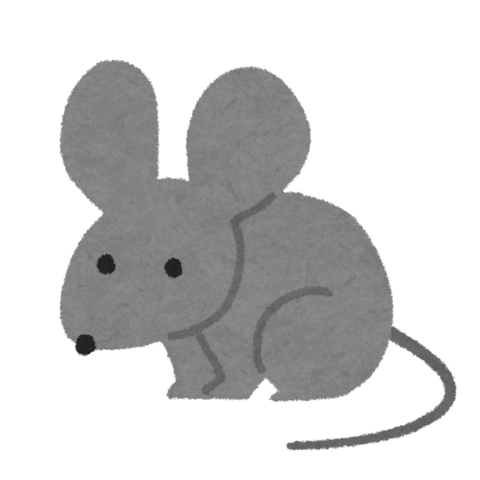 color10_gray_mouse