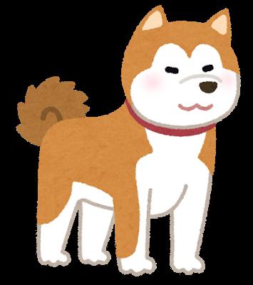 【キャイ~ン】わいの飼いたいイッヌが爆上がりwwwwwww