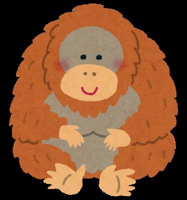 animal_Orangutan.png