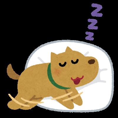 【ぬくぬく画像】ワンちゃんが温かくして寝てたらこうなったwwwwwwwwww