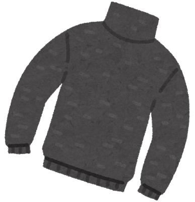 fashion_sweater_turtle.png