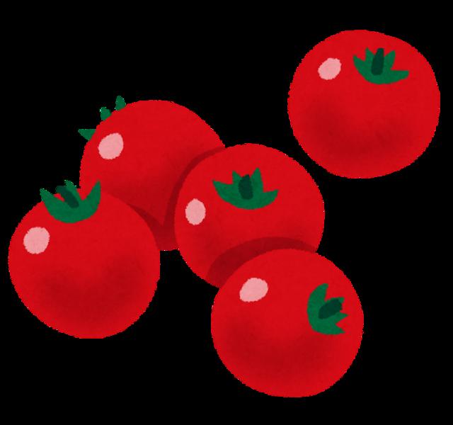【神秘】ミニトマトを植えてから発芽するまでを早送りした結果wwwwwwwwwwww