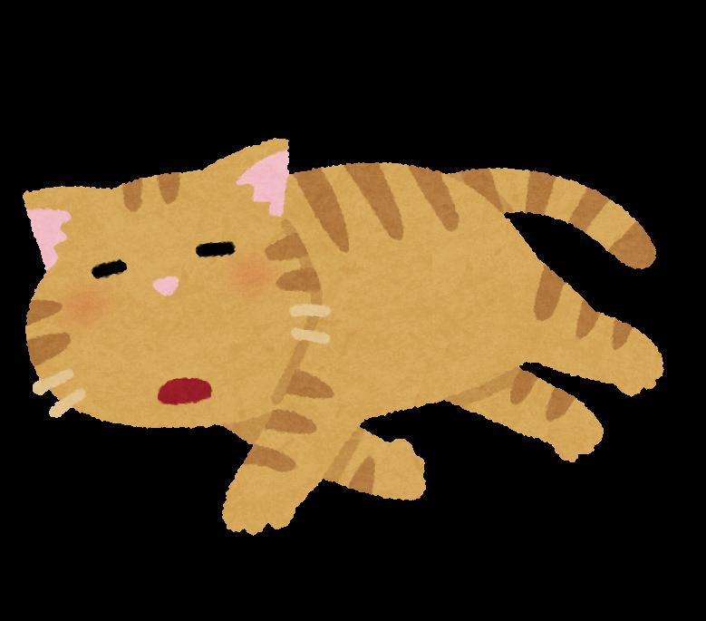 【驚愕】世界一カワイイまずい顔をする「猫」がコチラwwwwwwwww(画像あり)