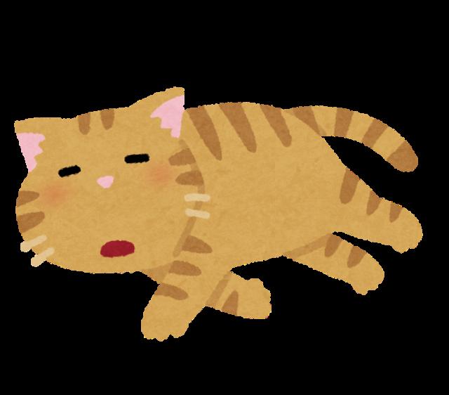 【画像】いい感じの猫の写真が撮れたからホラー映画のポスターみたいにしたったwwwwwwwwwwww