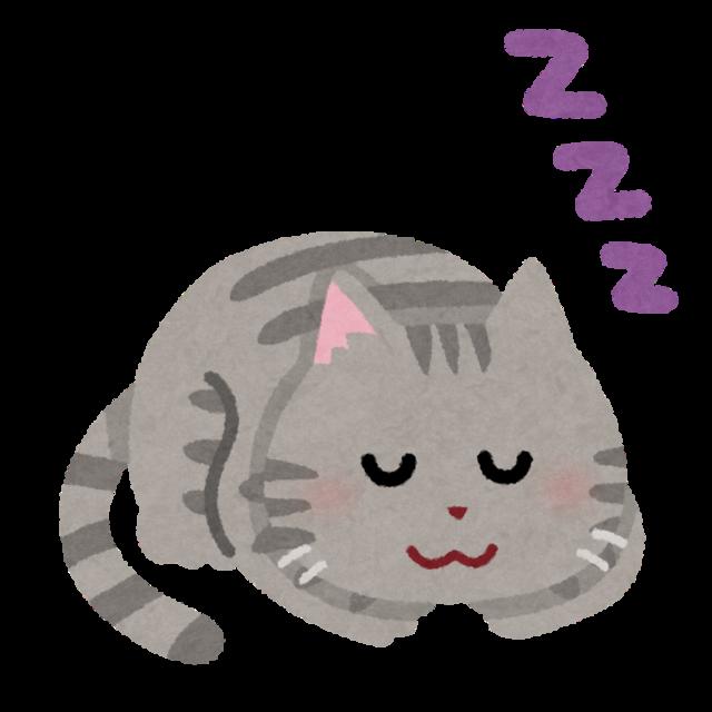 sleep_animal_cat.png