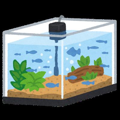 巨大水槽に水と栄養入れて日光当ててたらいずれ新しい生物誕生すんの