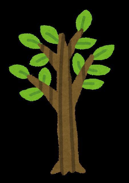 【ええやん!】ワイ、めっちゃいい感じの木の棒を拾うwwwwwwwwwwww