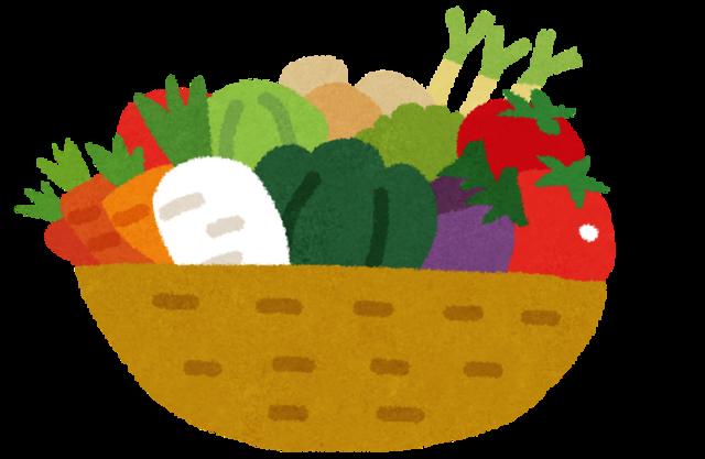 ワイ(10)「野菜嫌い!!!」パッパ「大人になると味覚変わるで」